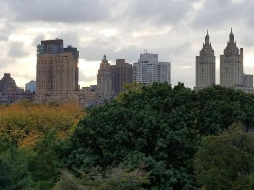 Skyline & Central Park from Metropolitan Museum of Art